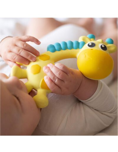 Mordedor Girafa Playgro