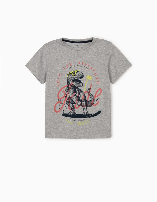 T-shirt for Boys, 'Dinosaur', Grey