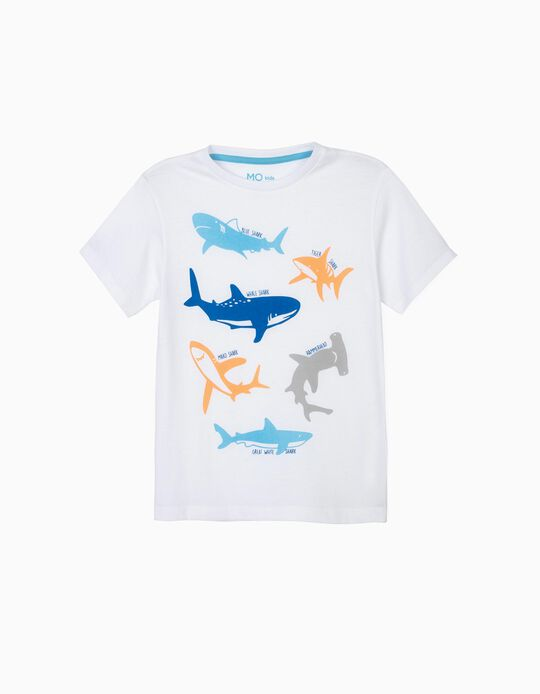 T-shirt tubarões