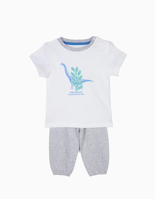 T-Shirt & Trouser Pyjamas, Dinosaur