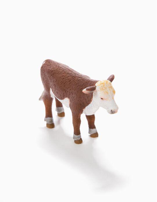 Vaca Science4You