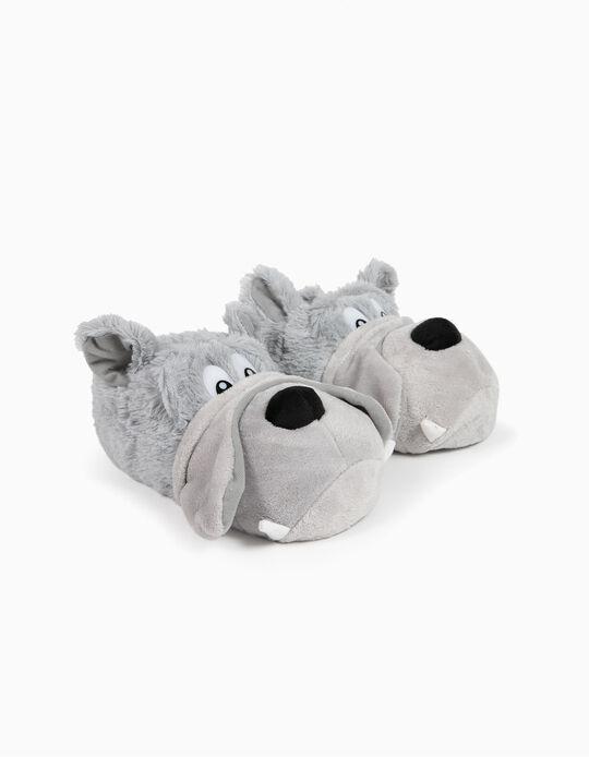 Slippers, Dog