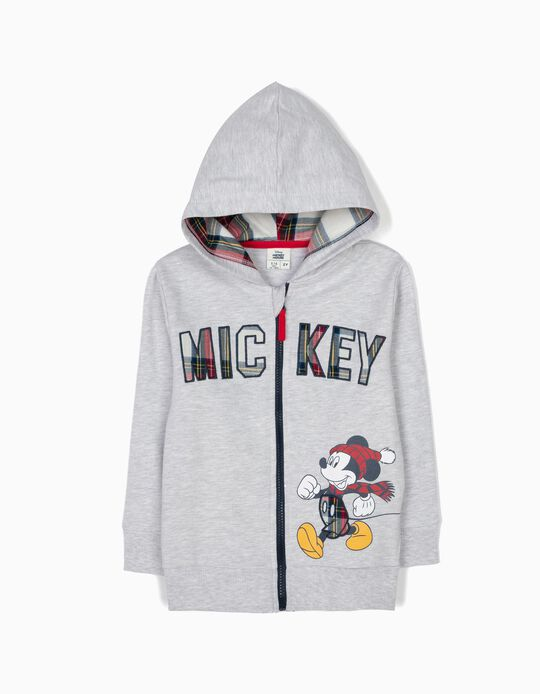 Grey Hooded Jacket with Checks, Mickey