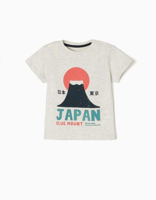 Grey T-Shirt, Japan