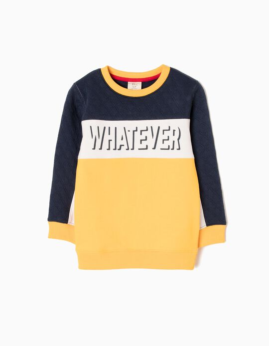 Sweatshirt Tricolor Whatever