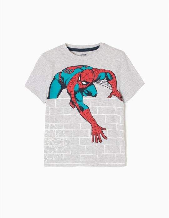 Grey T-Shirt, Spider-Man