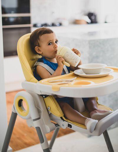 Cadeira Refeição Time to Eat Zy Baby