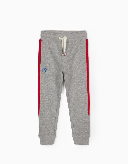 Joggers for Boys, 'ZY 96', Grey
