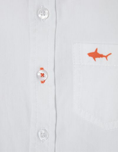Camisa Under Water Friends