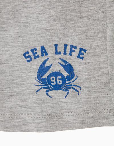 Calções de Treino Sea Life
