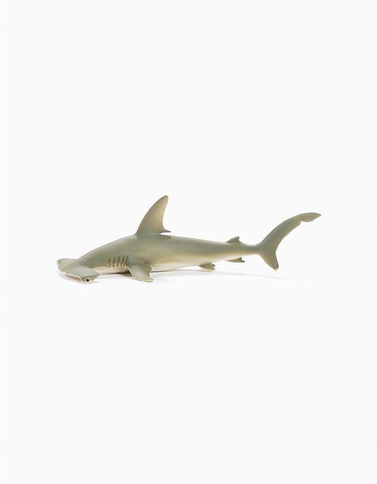 Tubarão-Martelo Science4You